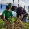 हरित नगर बनाउन नेपालगञ्ज उप महानगरपालिकामा वृक्षरोपण सम्पन्न